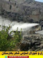 آتش سوزی در باغات و ارتفاعات چاهه مهار و خاموش شد+ تصاویر