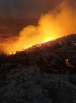 شهرستان جم نیاز ضروری به تقویت تجهیزات آتش نشانی دارد