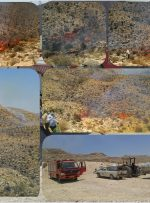 آتش سوزی گسترده در ارتفاعات بهارستان/ تلاش برای مهار آتش سوزی ادامه دارد