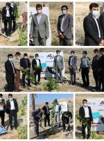 کاشت نهال در شهر بهارستان همزمان با روز جهانی خاک+ تصاویر
