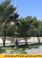 عملیات هرس درختان بلوار اندیشه شهر بهارستان در حال اجرا است